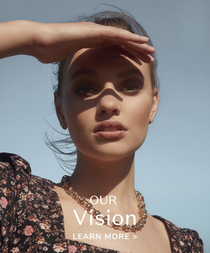 Our Vision.  Learn More